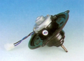 TIY-319